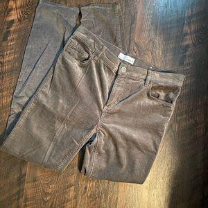 Loft corduroy skinny pant